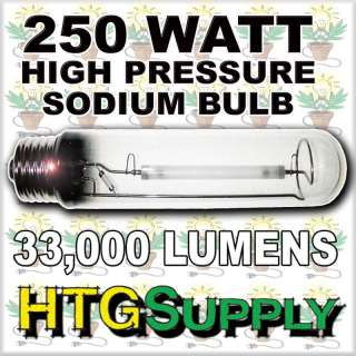 ULTIMATE 250 watt HPS & MH GROW LIGHT SYSTEM 250w w sun