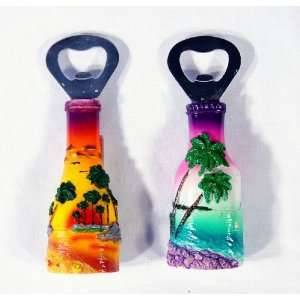 Handpainted Beer Bottle Opener (Beer Bottle Design) With Refrigerator