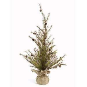 Pack of 2 Potted Mixed Pine Twig Christmas Trees with Pinecones 36