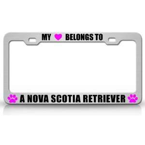 Dog Pet Steel Metal Auto License Plate Frame Tag Holder, Chrome/Pink